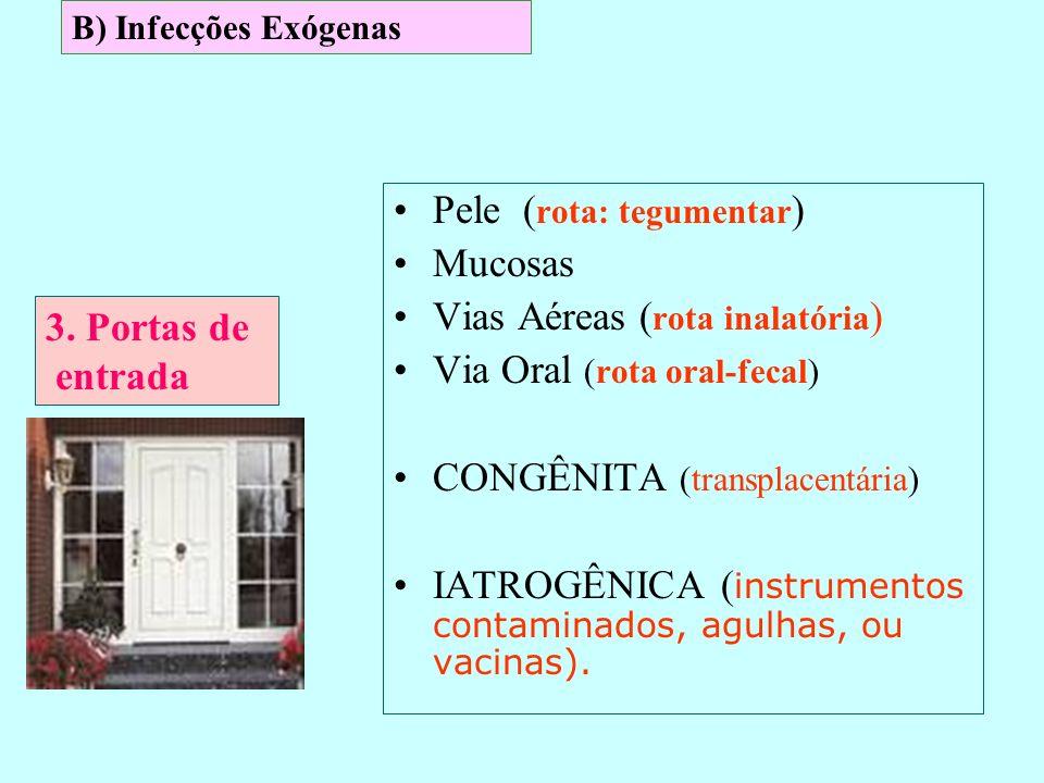 Pele ( rota: tegumentar ) Mucosas Vias Aéreas ( rota inalatória ) Via Oral (rota oral-fecal) CONGÊNITA (transplacentária) IATROGÊNICA ( instrumentos c