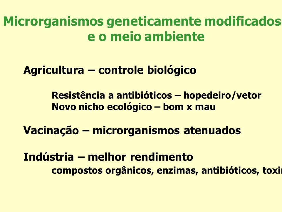 Microrganismos geneticamente modificados e o meio ambiente Agricultura – controle biológico Resistência a antibióticos – hopedeiro/vetor Novo nicho ec