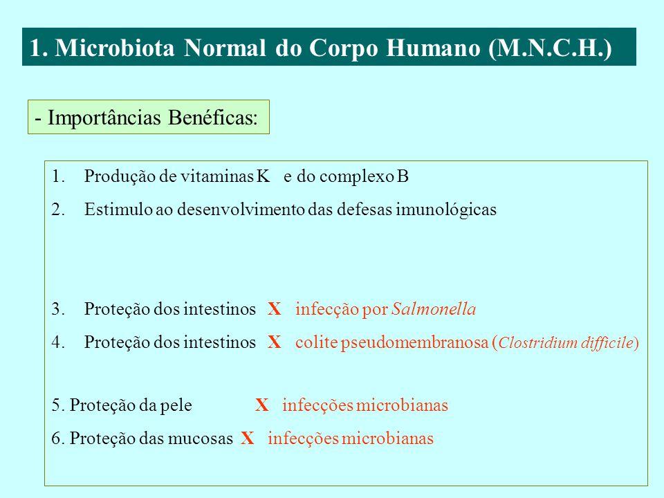 1. Microbiota Normal do Corpo Humano (M.N.C.H.) - Importâncias Benéficas: 1.Produção de vitaminas K e do complexo B 2.Estimulo ao desenvolvimento das