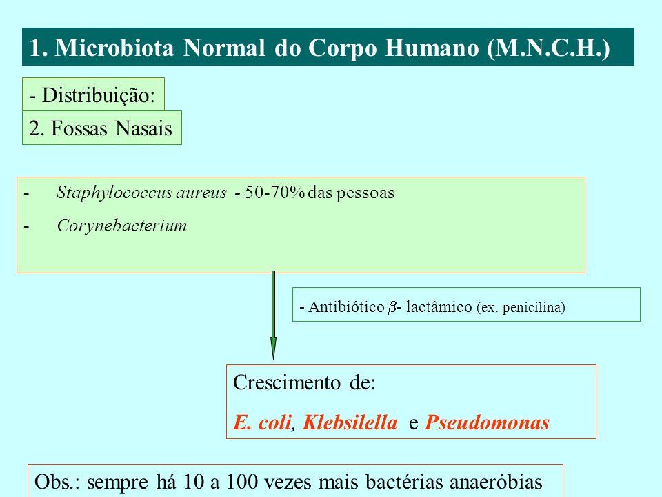 1. Microbiota Normal do Corpo Humano (M.N.C.H.) - Distribuição: 2. Fossas Nasais -Staphylococcus aureus - 50-70% das pessoas -Corynebacterium - Antibi