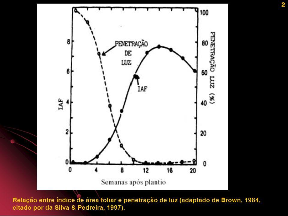 3 Valores teóricos de produção de matéria seca para milho em dois ângulos foliares (A=0 o, B=80 o ) e três IAFs (L) (Mitchell, 1979).