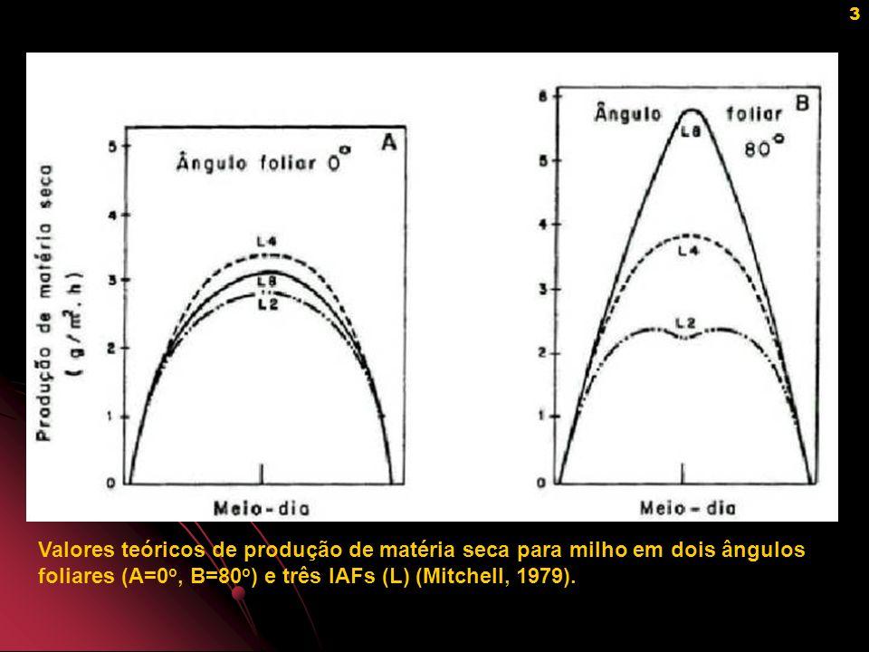 4 Atenuação da radiação fotossinteticamente ativa (RFA) em estande de girassol (esquerda) e milho (direita) (Larcher, 1995).