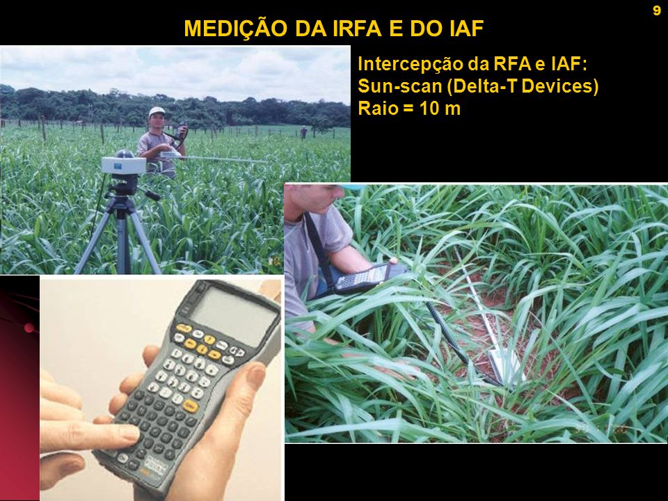 9 MEDIÇÃO DA IRFA E DO IAF Intercepção da RFA e IAF: Sun-scan (Delta-T Devices) Raio = 10 m