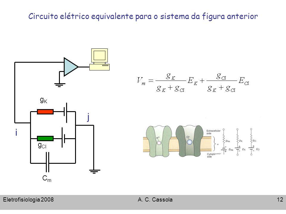 Eletrofisiologia 2008A. C. Cassola12 Circuito elétrico equivalente para o sistema da figura anterior g Cl gKgK i j CmCm