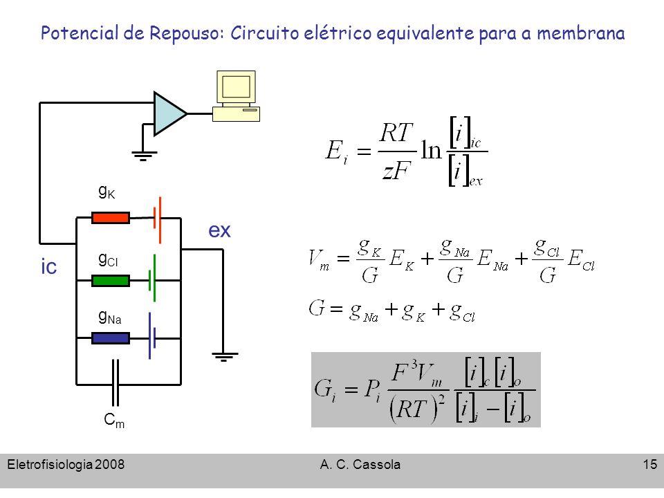 Eletrofisiologia 2008A. C. Cassola15 Potencial de Repouso: Circuito elétrico equivalente para a membrana g Cl gKgK ic ex CmCm g Na