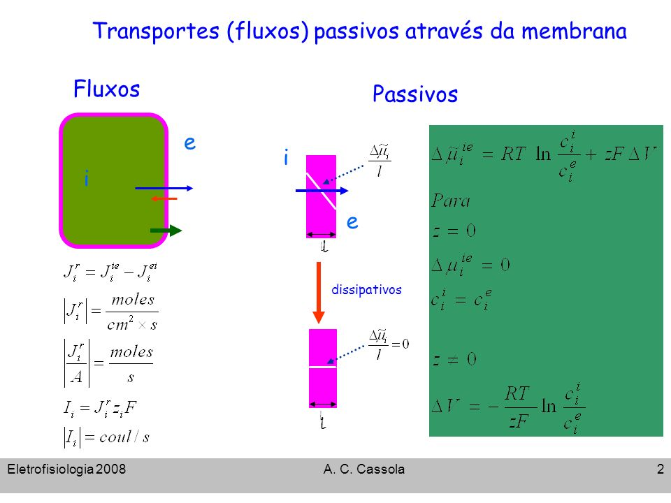 Eletrofisiologia 2008A. C. Cassola2 Transportes (fluxos) passivos através da membrana Fluxos i ee dissipativos Passivos l l l l i e