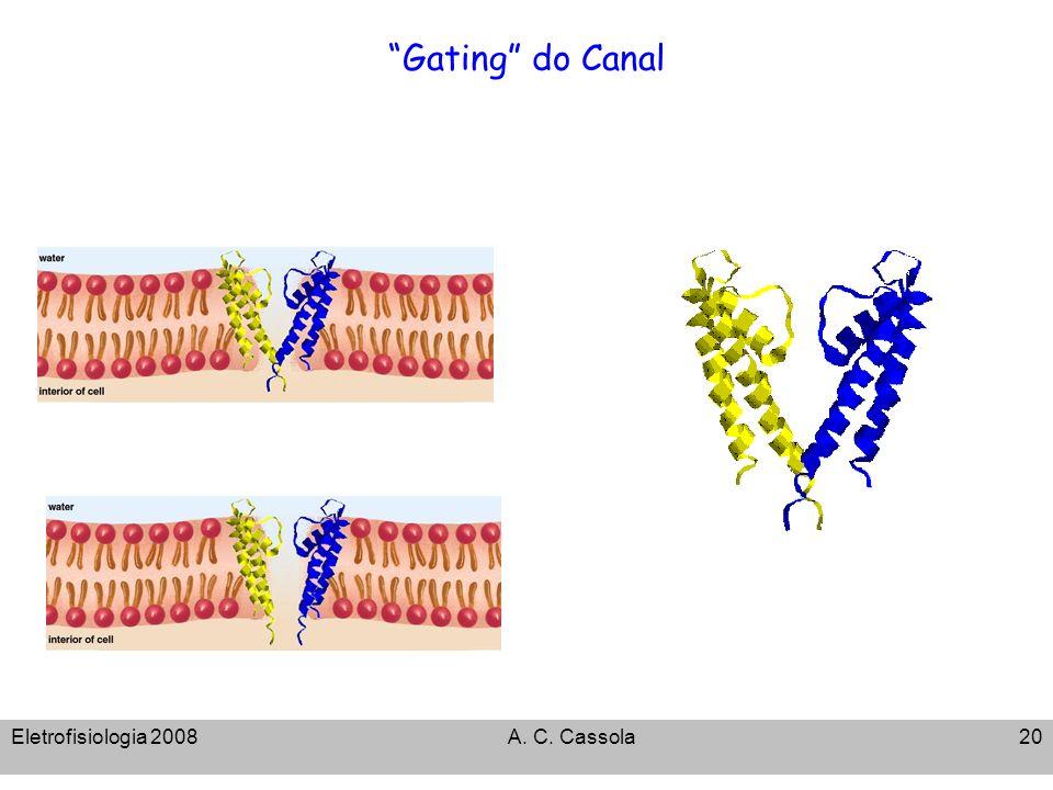 Eletrofisiologia 2008A. C. Cassola20 Gating do Canal