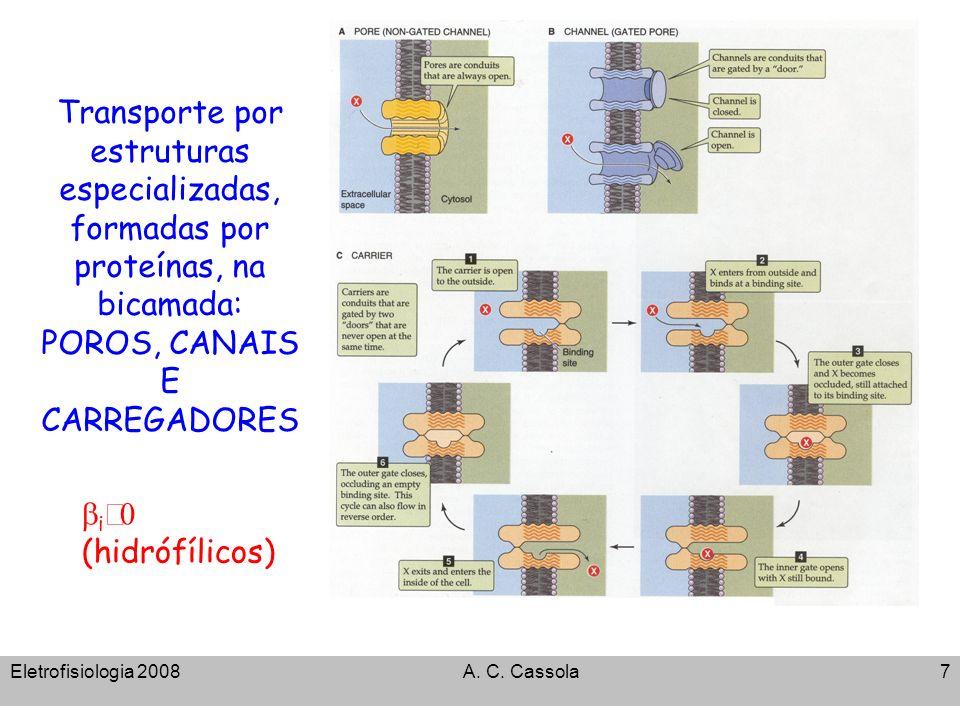 Eletrofisiologia 2008A. C. Cassola7 Transporte por estruturas especializadas, formadas por proteínas, na bicamada: POROS, CANAIS E CARREGADORES i (hid