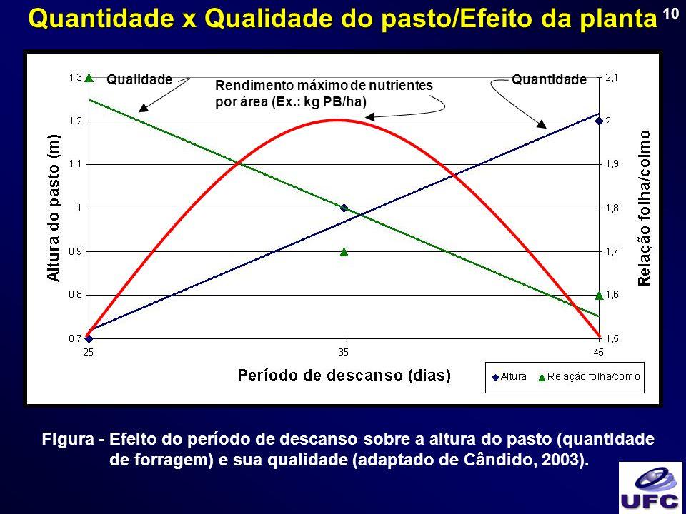 10 Figura - Efeito do período de descanso sobre a altura do pasto (quantidade de forragem) e sua qualidade (adaptado de Cândido, 2003). Rendimento máx
