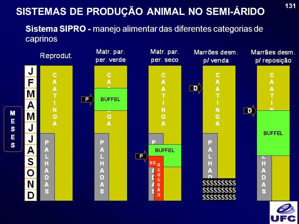 131 SISTEMAS DE PRODUÇÃO ANIMAL NO SEMI-ÁRIDO Sistema SIPRO - manejo alimentar das diferentes categorias de caprinos