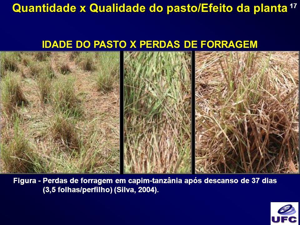 17 IDADE DO PASTO X PERDAS DE FORRAGEM Figura - Perdas de forragem em capim-tanzânia após descanso de 37 dias (3,5 folhas/perfilho) (Silva, 2004). Qua