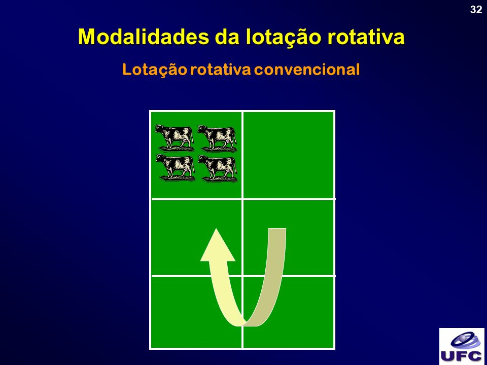 32 Lotação rotativa convencional Modalidades da lotação rotativa
