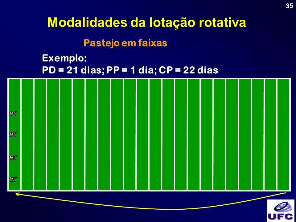 35 Pastejo em faixas Modalidades da lotação rotativa Exemplo: PD = 21 dias; PP = 1 dia; CP = 22 dias