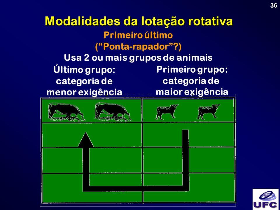 36 Primeiro último (Ponta-rapador?) Usa 2 ou mais grupos de animais Modalidades da lotação rotativa Primeiro grupo: categoria de maior exigência Últim