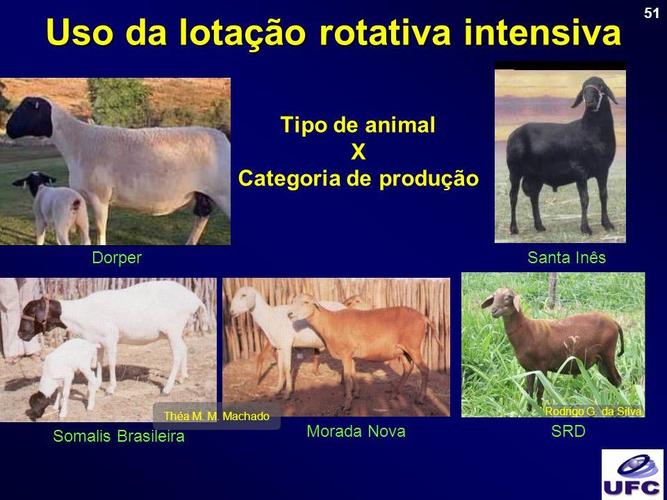 51 Tipo de animal X Categoria de produção Morada Nova Somalis Brasileira Santa InêsDorper SRD Uso da lotação rotativa intensiva Théa M. M. Machado Rod