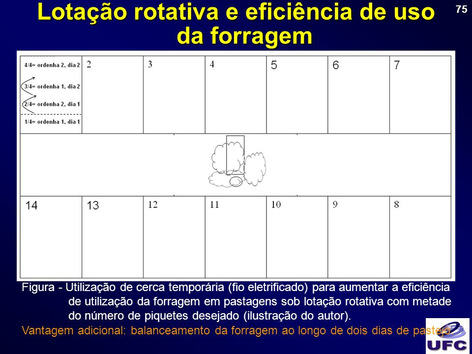 75 Lotação rotativa e eficiência de uso da forragem Figura - Utilização de cerca temporária (fio eletrificado) para aumentar a eficiência de utilizaçã