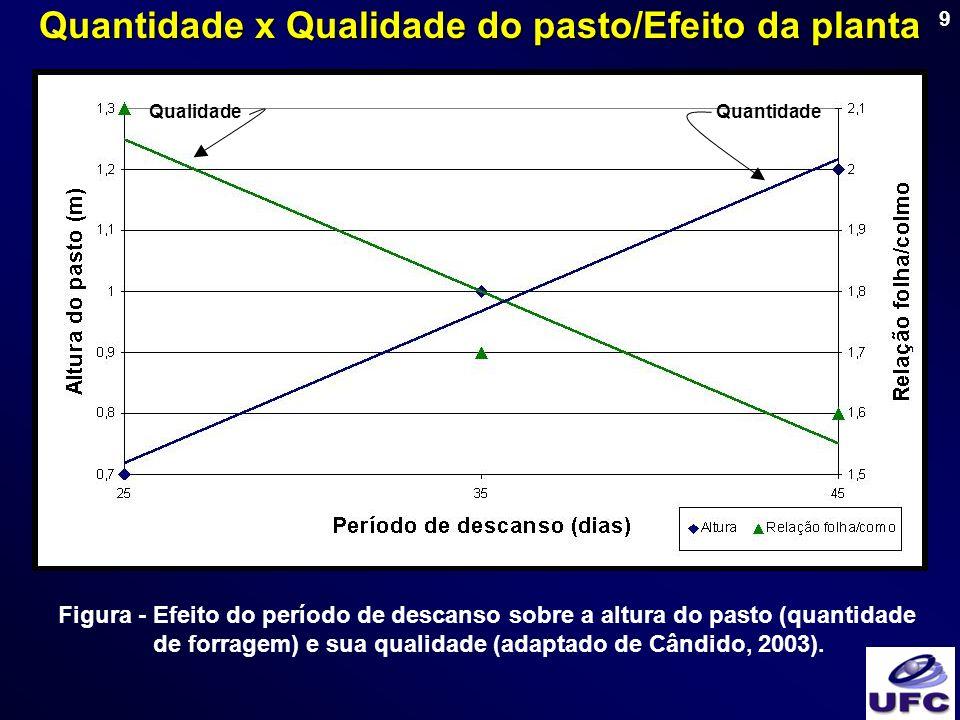 9 Figura - Efeito do período de descanso sobre a altura do pasto (quantidade de forragem) e sua qualidade (adaptado de Cândido, 2003). Rendimento máxi