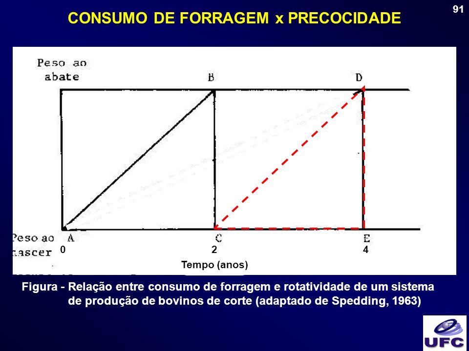 91 CONSUMO DE FORRAGEM x PRECOCIDADE Tempo (anos) 024 Figura - Relação entre consumo de forragem e rotatividade de um sistema de produção de bovinos d