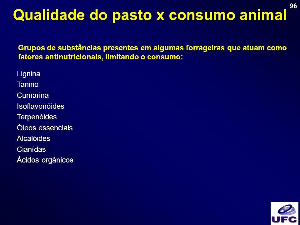 96 Grupos de substâncias presentes em algumas forrageiras que atuam como fatores antinutricionais, limitando o consumo: Qualidade do pasto x consumo a