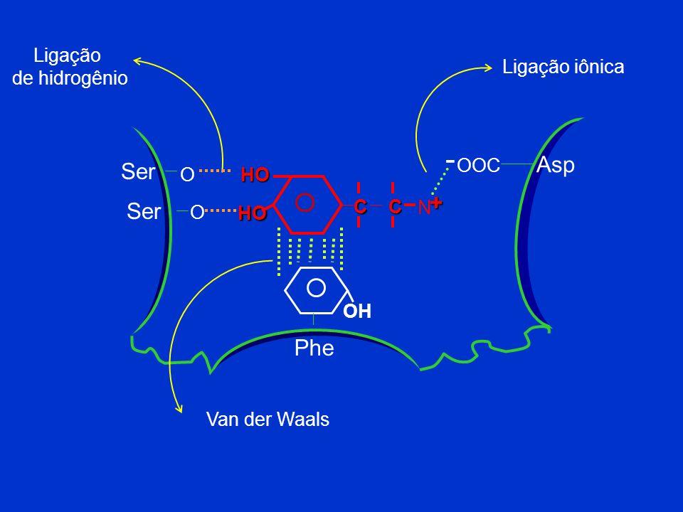 OH Ser 192 Ser 188 OH Asp 106 OOC - + Phe 163 OH HO HO CCNH4 Sítio de ligação da adrenalina