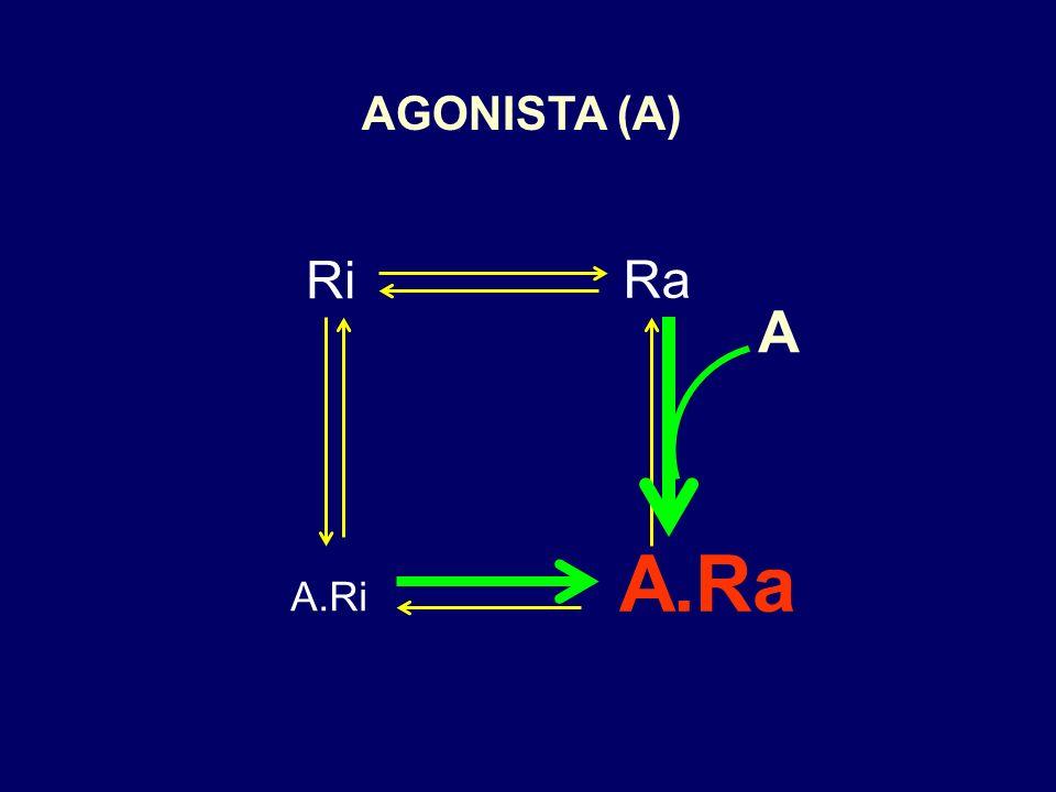 Ri Ra F.RaF.Ri Modelo dos dois estados