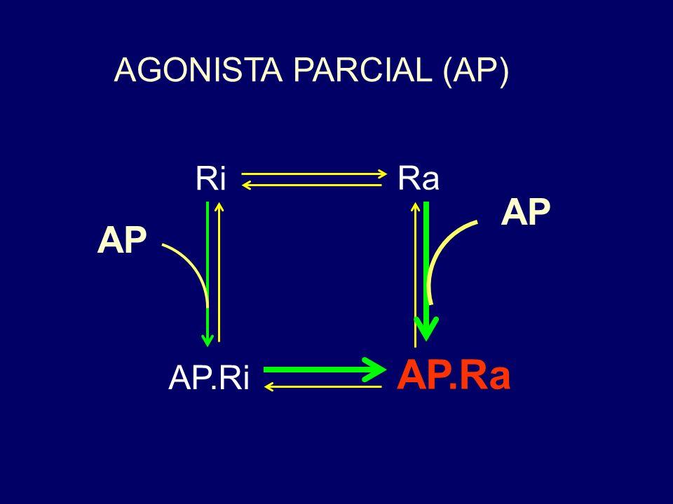 AGONISTA (A) Ri Ra A.Ra A.Ri A
