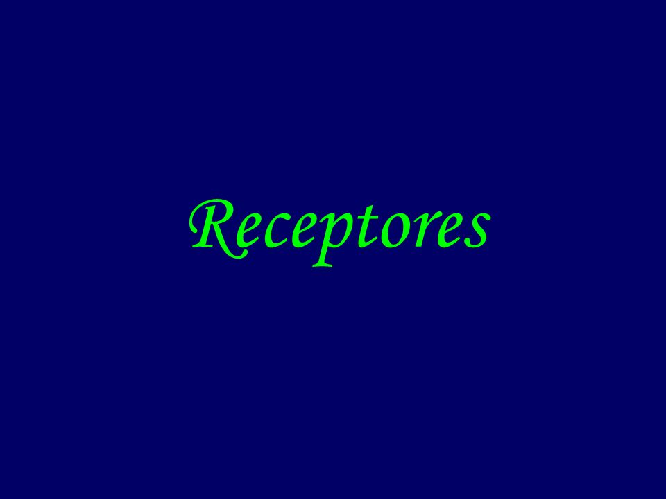 Tipos de receptores
