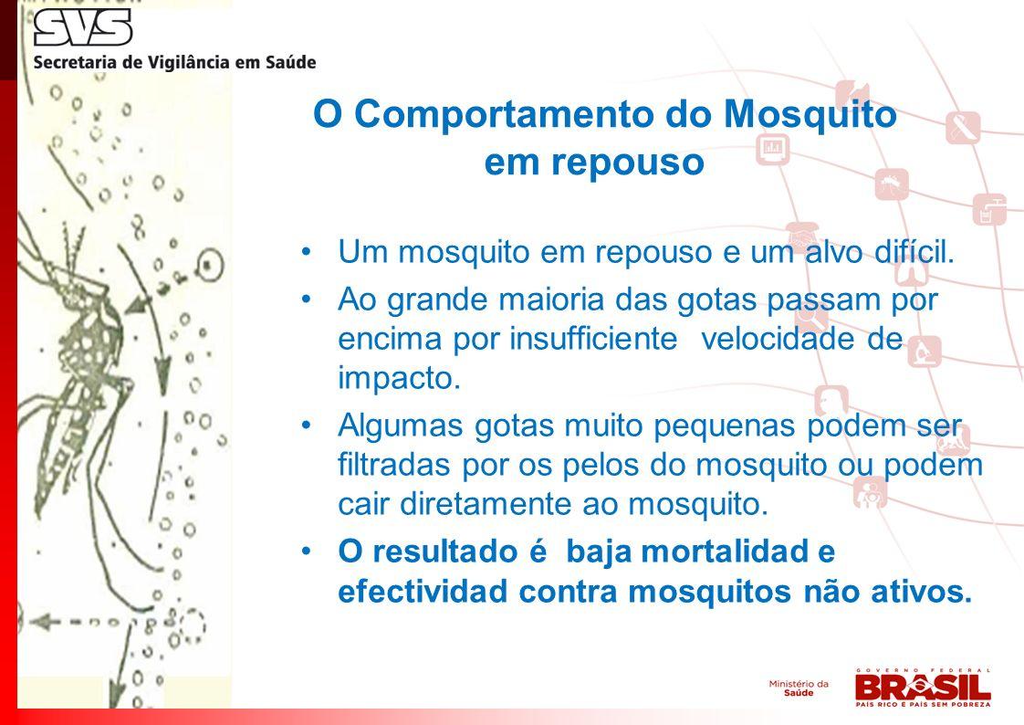 O Comportamento do Mosquito em repouso Um mosquito em repouso e um alvo difícil.
