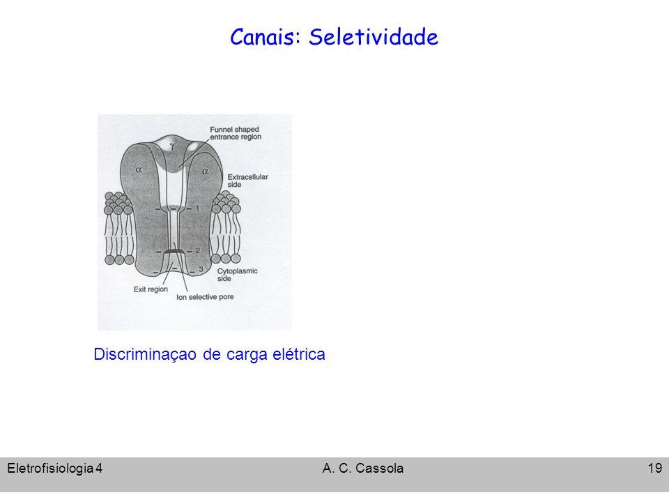 Eletrofisiologia 4A. C. Cassola19 Canais: Seletividade Discriminaçao de carga elétrica