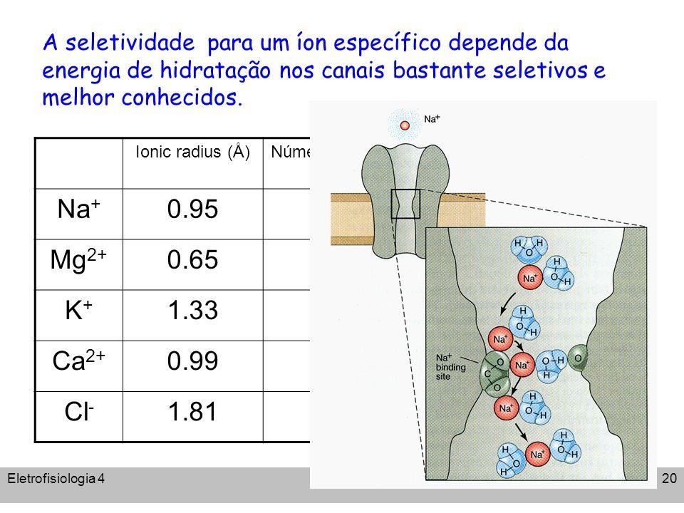Eletrofisiologia 4A. C. Cassola20 A seletividade para um íon específico depende da energia de hidratação nos canais bastante seletivos e melhor conhec