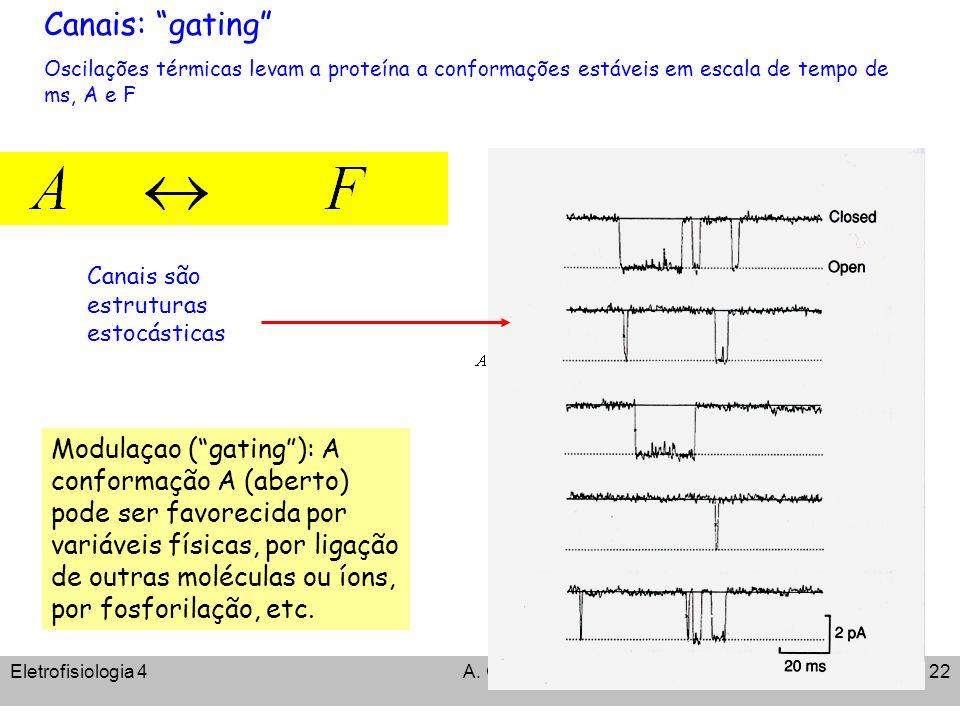 Eletrofisiologia 4A. C. Cassola22 Canais: gating Oscilações térmicas levam a proteína a conformações estáveis em escala de tempo de ms, A e F Modulaça