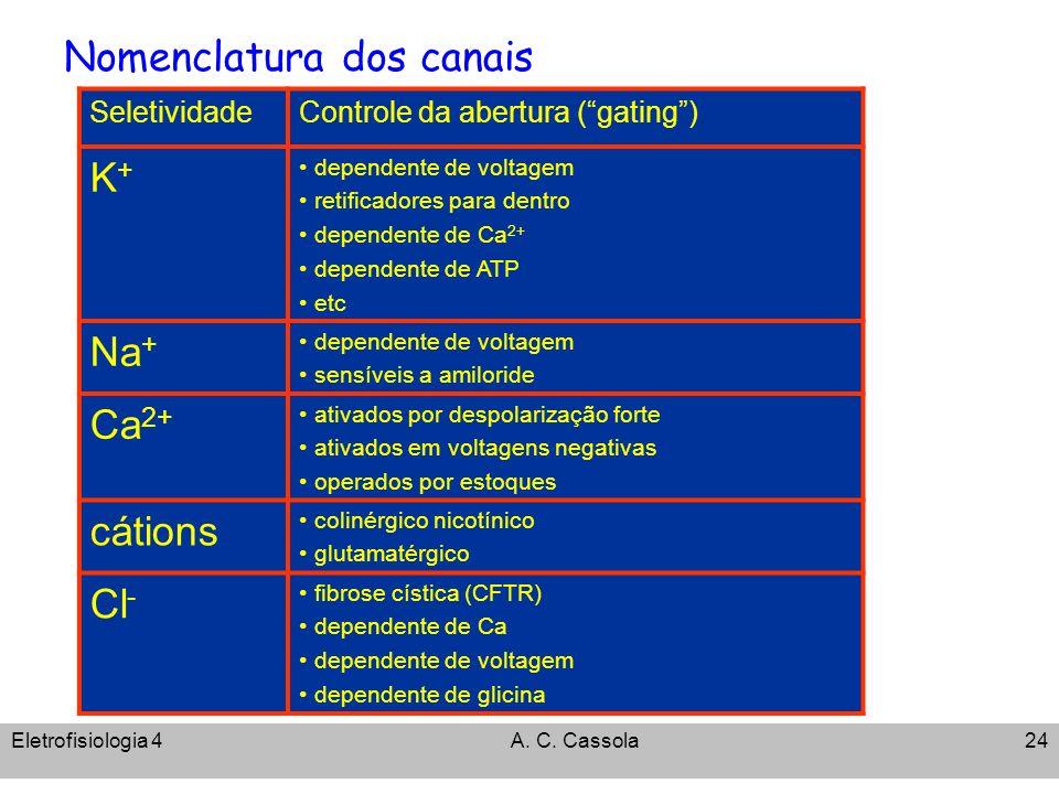 Eletrofisiologia 4A. C. Cassola24 Nomenclatura dos canais SeletividadeControle da abertura (gating) K+K+ dependente de voltagem retificadores para den