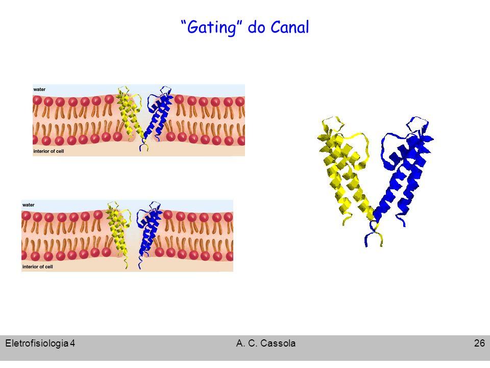 Eletrofisiologia 4A. C. Cassola26 Gating do Canal