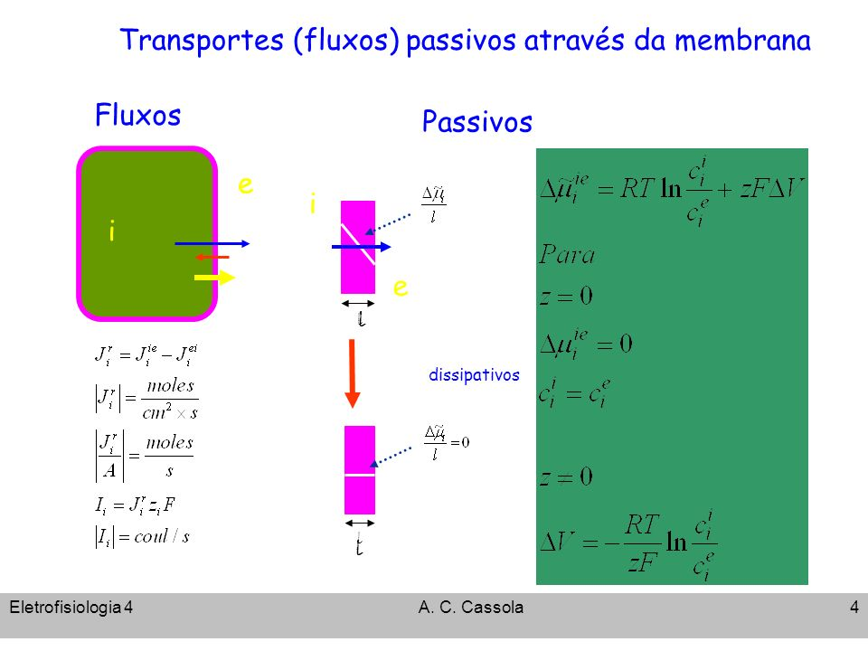 Eletrofisiologia 4A. C. Cassola4 Transportes (fluxos) passivos através da membrana Fluxos i ee dissipativos Passivos l l l l i e