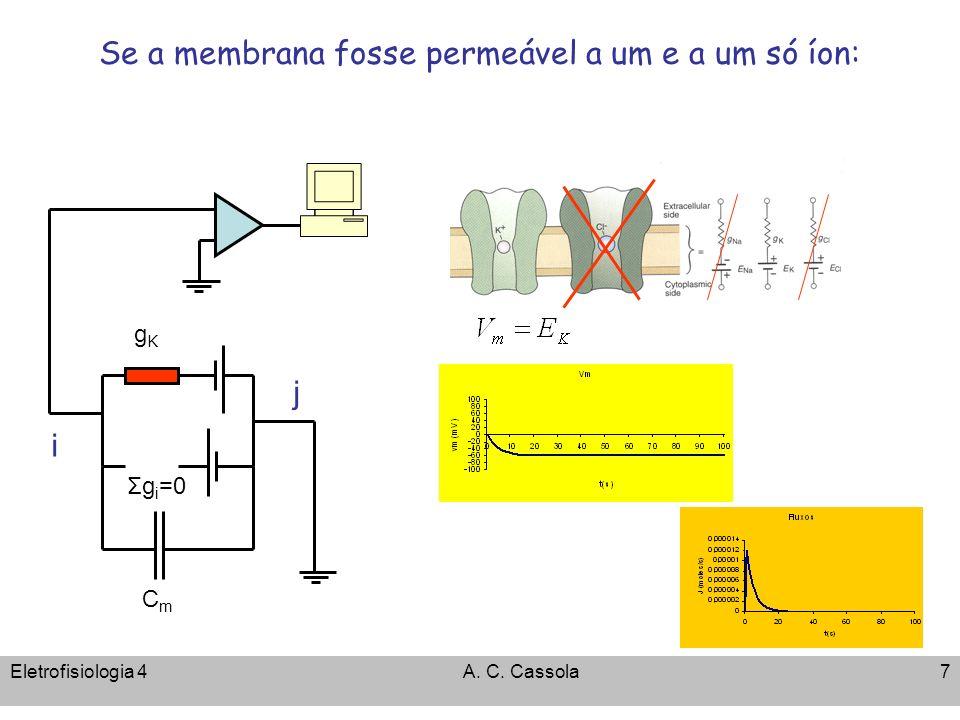 Eletrofisiologia 4A. C. Cassola7 Se a membrana fosse permeável a um e a um só íon: gKgK i j CmCm Σg i =0
