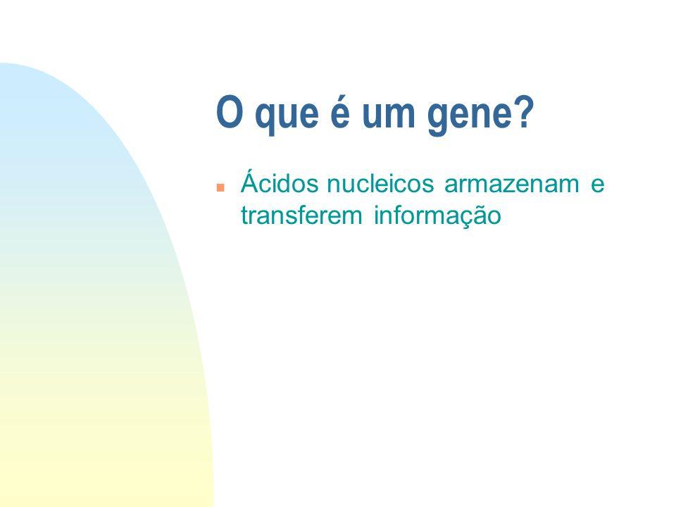 O que é um gene? n Unidade básica da hereditariedade n Seqüência linear de nucleotídeos do DNA n Consiste na unidade funcional de um plasmídeo ou crom