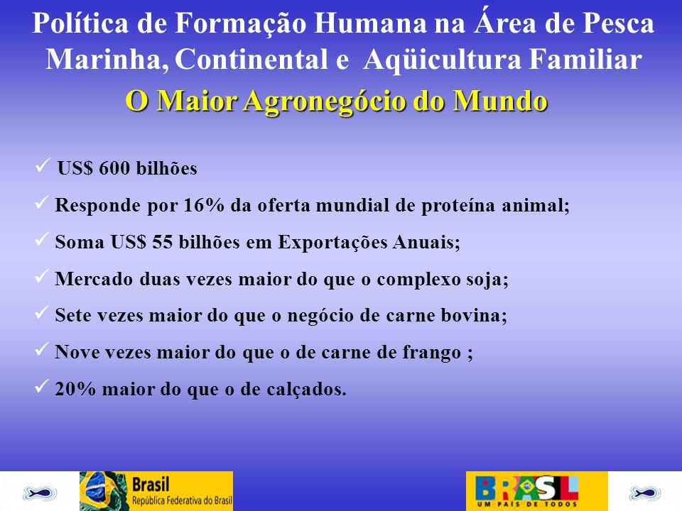 Política de Formação Humana na Área de Pesca Marinha, Continental e Aqüicultura Familiar O Maior Agronegócio do Mundo US$ 600 bilhões Responde por 16%