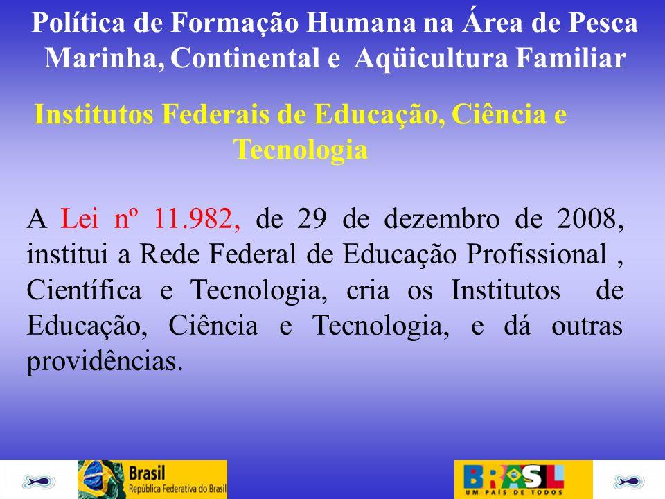 Institutos Federais de Educação, Ciência e Tecnologia A Lei nº 11.982, de 29 de dezembro de 2008, institui a Rede Federal de Educação Profissional, Ci