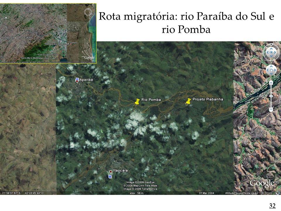 Rota migratória: rio Paraíba do Sul e rio Pomba 32