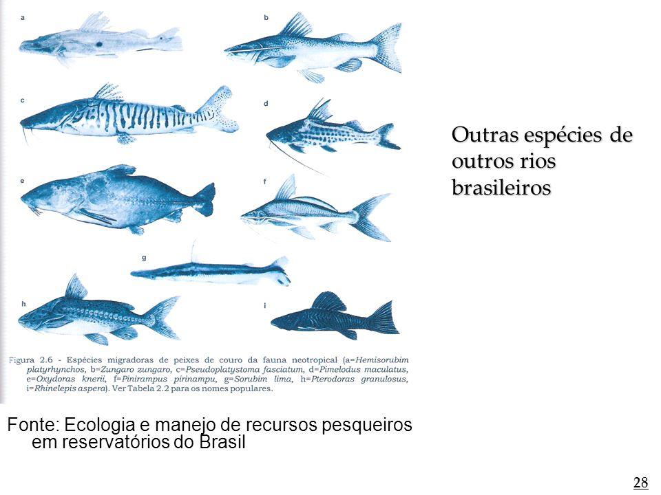 Fonte: Ecologia e manejo de recursos pesqueiros em reservatórios do Brasil 28 Outras espécies de outros rios brasileiros