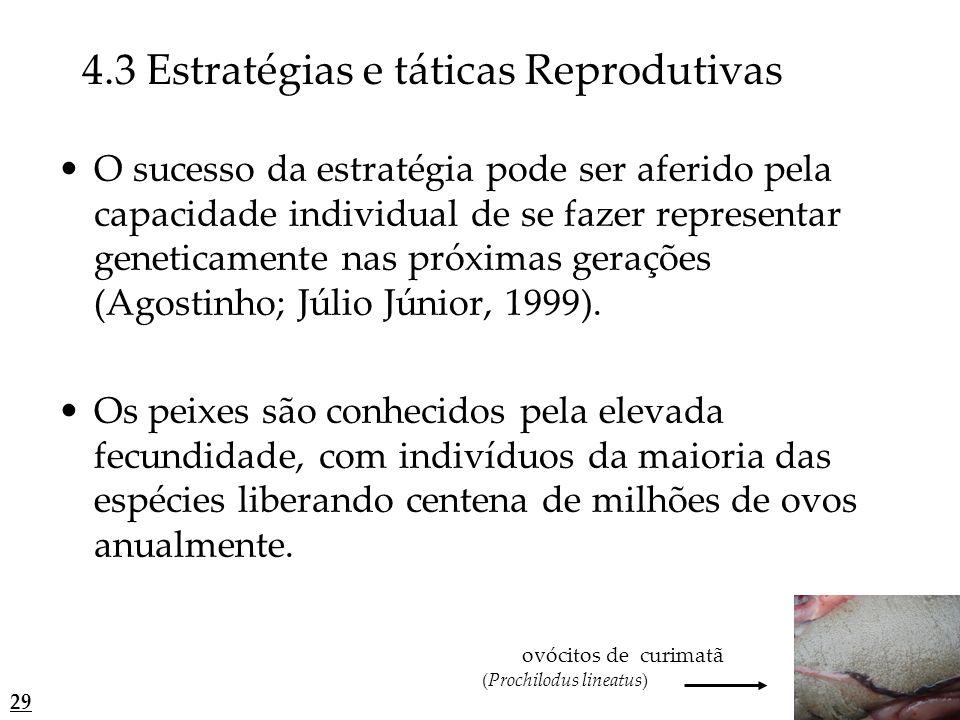 O sucesso da estratégia pode ser aferido pela capacidade individual de se fazer representar geneticamente nas próximas gerações (Agostinho; Júlio Júni