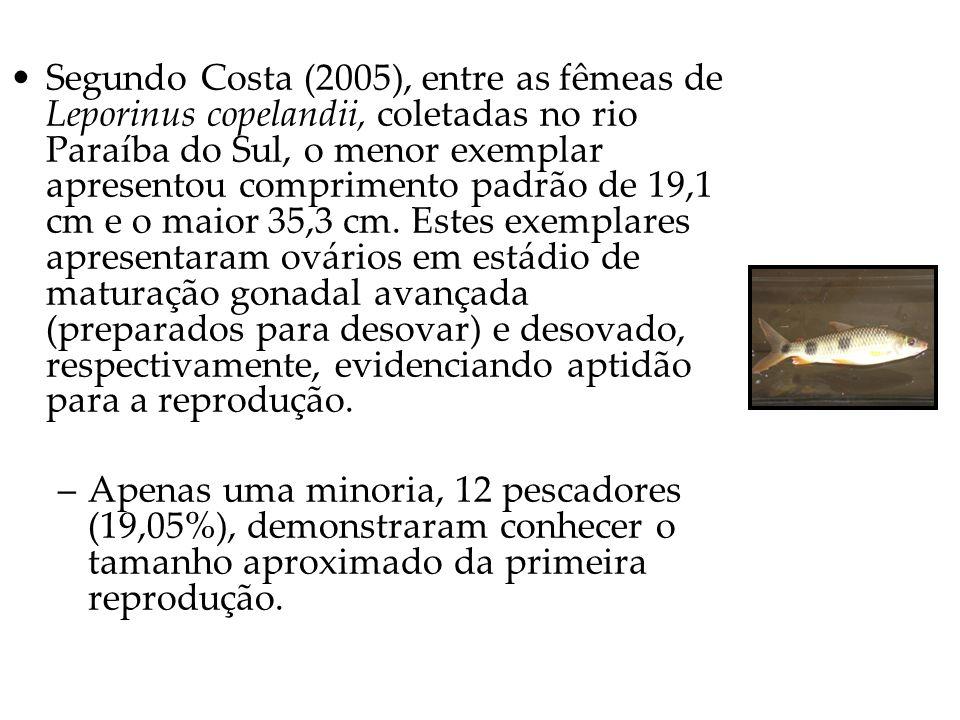 Segundo Costa (2005), entre as fêmeas de Leporinus copelandii, coletadas no rio Paraíba do Sul, o menor exemplar apresentou comprimento padrão de 19,1 cm e o maior 35,3 cm.