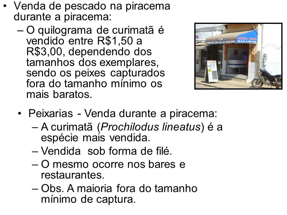 Venda de pescado na piracema durante a piracema: –O quilograma de curimatã é vendido entre R$1,50 a R$3,00, dependendo dos tamanhos dos exemplares, sendo os peixes capturados fora do tamanho mínimo os mais baratos.