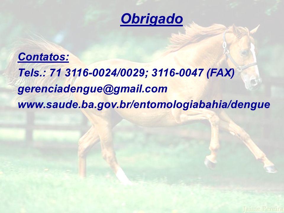 Obrigado Contatos: Tels.: 71 3116-0024/0029; 3116-0047 (FAX) gerenciadengue@gmail.com www.saude.ba.gov.br/entomologiabahia/dengue