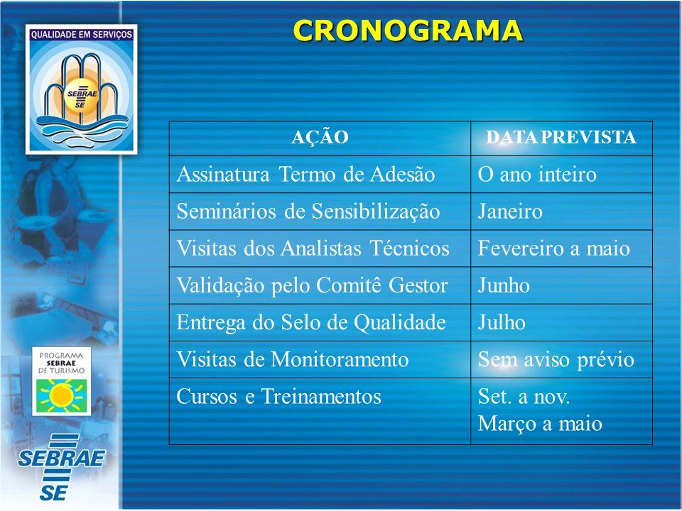 CRONOGRAMA AÇÃODATA PREVISTA Assinatura Termo de AdesãoO ano inteiro Seminários de SensibilizaçãoJaneiro Visitas dos Analistas TécnicosFevereiro a mai