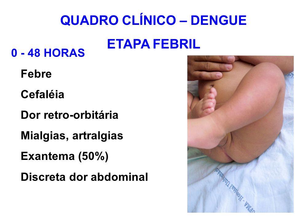 QUADRO CLÍNICO – DENGUE ETAPA FEBRIL 0 - 48 HORAS Febre Cefaléia Dor retro-orbitária Mialgias, artralgias Exantema (50%) Discreta dor abdominal