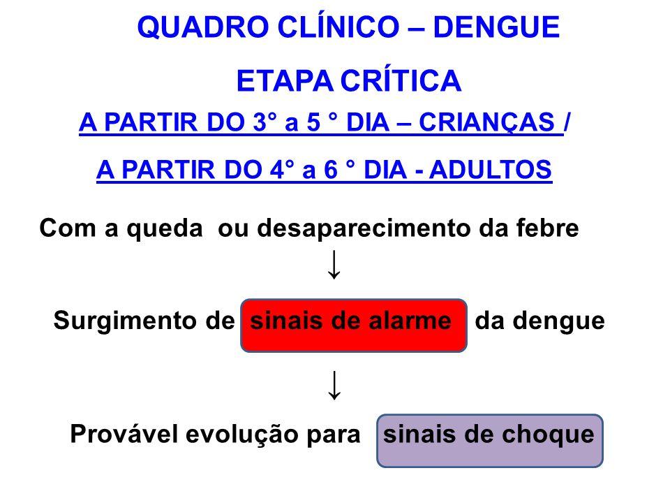 A PARTIR DO 3° a 5 ° DIA – CRIANÇAS / A PARTIR DO 4° a 6 ° DIA - ADULTOS Com a queda ou desaparecimento da febre Surgimento de sinais de alarme da den