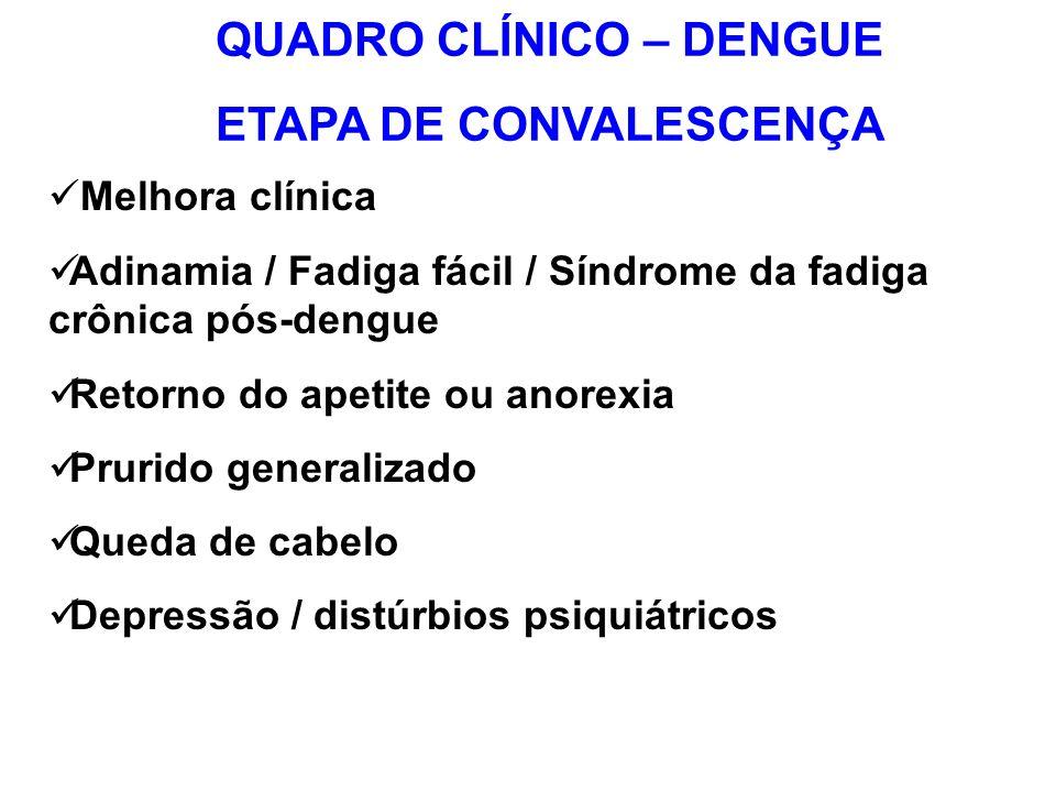 Melhora clínica Adinamia / Fadiga fácil / Síndrome da fadiga crônica pós-dengue Retorno do apetite ou anorexia Prurido generalizado Queda de cabelo De