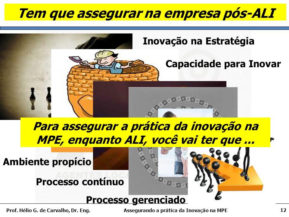 Assegurando a prática da Inovação na MPEProf. Hélio G.