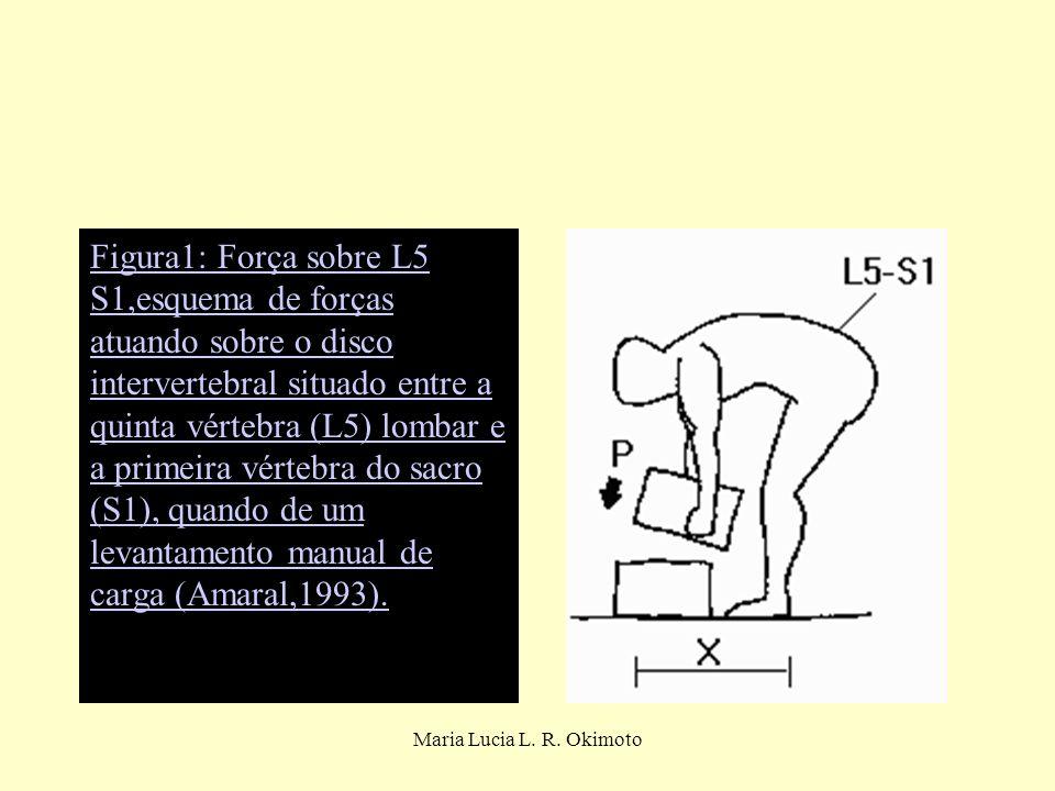 Maria Lucia L. R. Okimoto Figura1: Força sobre L5 S1,esquema de forças atuando sobre o disco intervertebral situado entre a quinta vértebra (L5) lomba